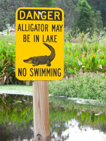 no swimming sign: Danger - Alligator May Be In Lake - No Swimming sign by lake in Clearwater,  Florida