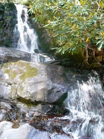 Waterval in Tennesee Bergen Stockfoto