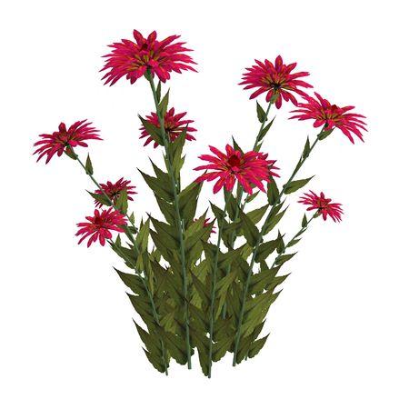 白地にピンクのファンタジー花