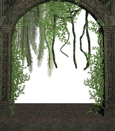 白い背景の上の戸口にブドウの木 写真素材