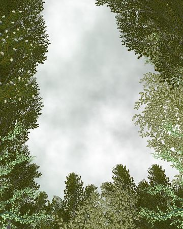 Outdoor forest background