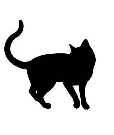 Arte Negro silueta gato ilustración sobre un fondo blanco