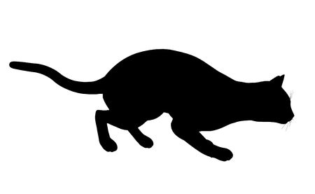 Black cat art illustration silhouette on a white background