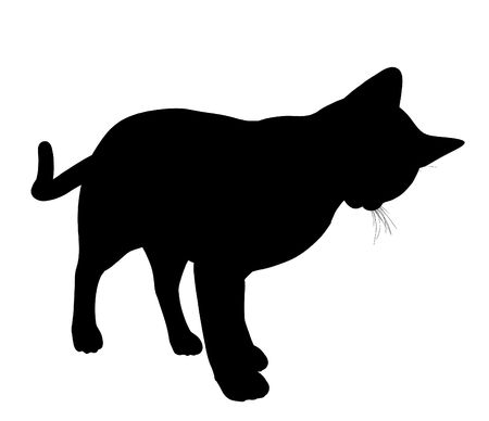 Black cat art illustration silhouette on a white background