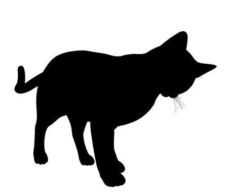 gato negro: Silueta de ilustraci�n de arte de gato negro sobre un fondo blanco  Foto de archivo