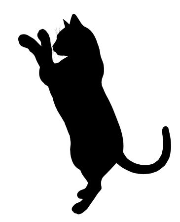 Chat noir art illustration silhouette sur un fond blanc Banque d'images - 5682102