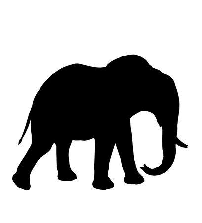 Black Elephant Art silhouette illustration sur un fond blanc Banque d'images - 5682519
