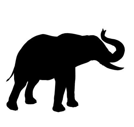 Black elephant art illustration silhouette on a white background