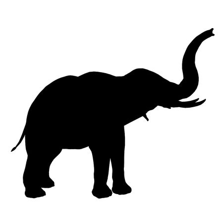 Black elephant art illustration silhouette on a white background