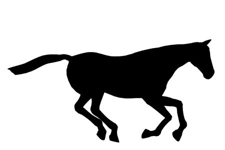 steed: Black horse art illustration silhouette on a white background Stock Photo