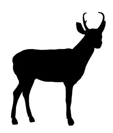 Zwarte herten kunst illustratie silhouet op een witte achtergrond