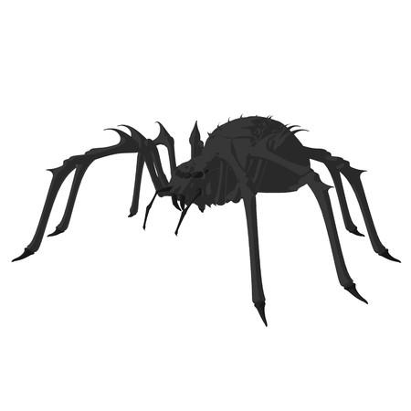 Black spipder on a white background Imagens
