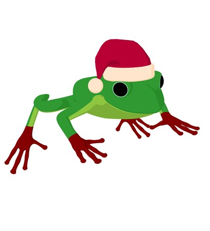 Frog with a santa hat on a white background