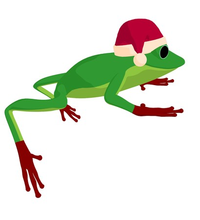 Frog with a santa hat on a white background photo