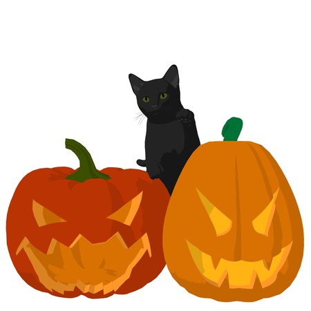 Black cat on a pumpkin on a white background Stock Photo