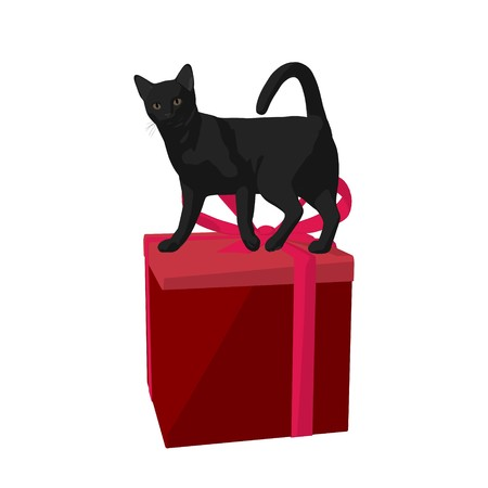 Black cat on a gift box on a white background