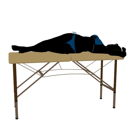 Woman on top of a massage table on a white background Banco de Imagens