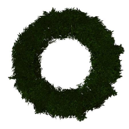 Green Wreath  Zdjęcie Seryjne