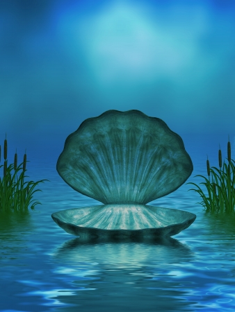 Beautiful ocean background with seashell and cattails