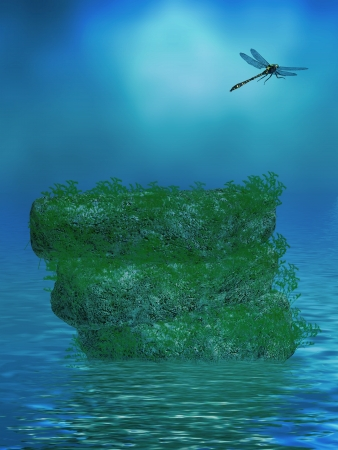 Beautiful ocean background with rocks and a dragonfly