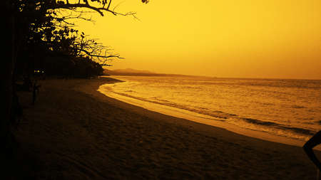 Beautiful sunset view from the beach