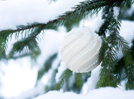 Christmas white shiny ball toy on the snow branch of a green tree. Glitter Christmas toy. Snow lies on the branches of fir tree. Christmas winter concept. Copy space for text, font, words. Top view