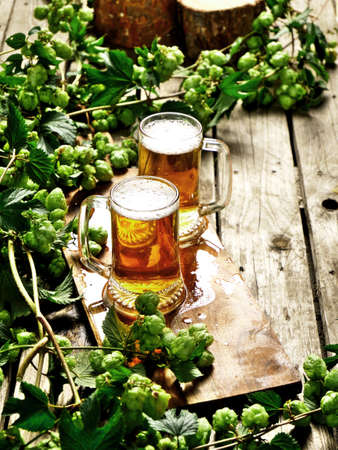 Two mugs of cold craft beer. A composition with freshly harvested hops.