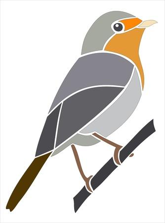 robin bird: European Robin