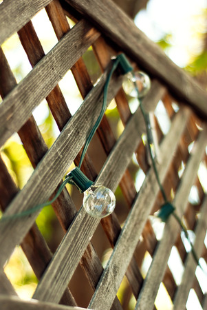 A closeup of a bulb on a green string of patio lights in summertime.