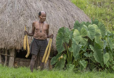 バリエム バレー、西パプア、インドネシア、2016 年 2 月 12 日: 地元の男性彼の家の外の 4 つの kotekas