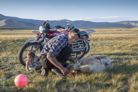 huvsgul, Mongolia, September 6th, 2017: mongolian man skinning a goat Editorial