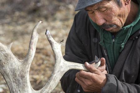 mongolian man clenaning reideer horns