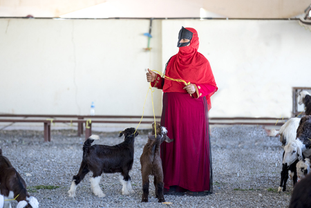 nizwa, Oman, December 1st, 2017: omani woman with her goat at a market