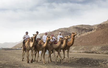 Khadal, Oman, April 7th, 2018: Omani men riding camels in a landscape of rural Oman