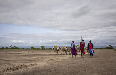 Same, Tanzania, 7th June, 2019:  Maasai people traveling in a savannah to fetch water from a stream Editorial
