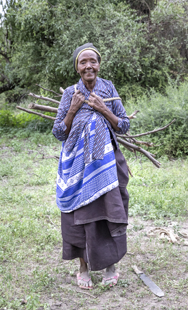 Same, Tanzania, 7th June, 2019:  old Maasai woman carrying firefood from the forest