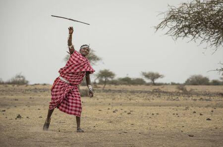 Massai-Mann, der einen Speer wirft Standard-Bild