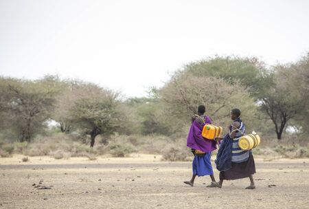 Arusha, Tanzania, 8th September 2019: maasai women walking in a savannah with a water canisters to fetch water from a well Imagens
