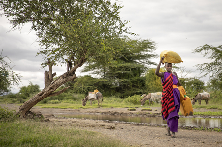 Same, Tanzania, 8th June, 2019:  Maasai woman arriving at a muddy stream to wash her laundry and collect drinking water