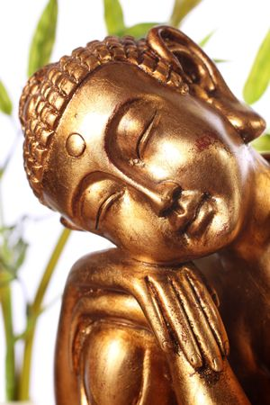 buddha face: A close up of a gold Buddhist staue in front of a white background with green leaves in the background.