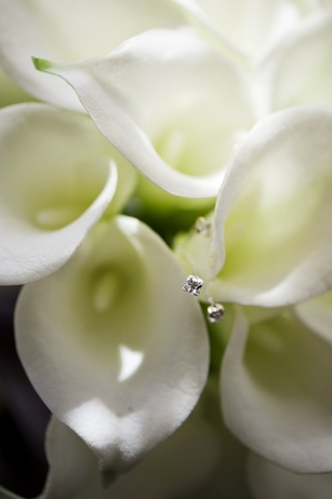 lillies: Close up of a bouquet