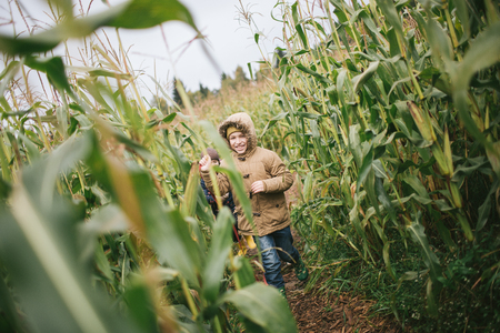 Little boys with beagle in the cornfield in autumn