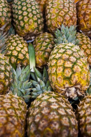 ripeness: Bin at a farmers market of several pineapples in various stages of ripeness Stock Photo