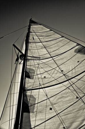 Black and white photograph of two sails of a sailboat set against the sky