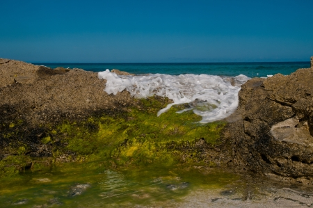 ocean wave rolling over rocks on a beach.  rocks are covered in gree algae and white foam in visible on the water.  copy space in the clear blue sky