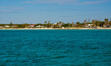 Beautiful green waters in the islands of the Bahamas.  Sky is clear blue.  Shore line has beach, palm trees and a few homes along it.  copy space available