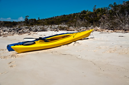 Yellow and blue kayaks on the white sand beach with trees and scrub brush in the background.  copy space in the sand available