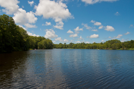 Greenfield Lake Park in Wilmington north carolina, usa.  beautiful blue sky, lusch green trees surrounding green lake water Stock Photo