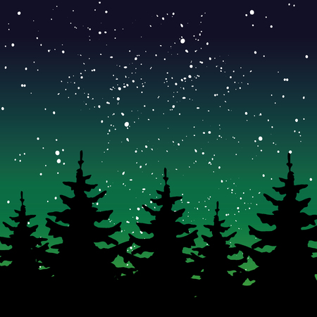 Night forest illustration