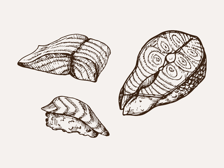 hand drawn sliced ??salmon vector illustration